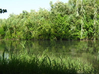 Wetlands In Shirvan National Park