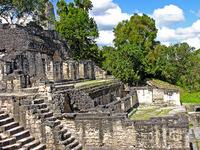 El Mirador Mayan Hiking Expedition in Northern Guatemala