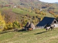 Mtb Carpathians