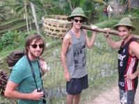Bali Tours Activity
