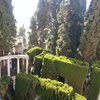 Rodrguez Acosta Foundation City Park