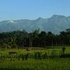 View Of The Iyan-Argapura Complex