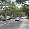East Coast Park Service Road