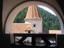 View From Inside
