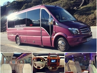 Our Limo Vip Mini Bus