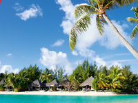 Polinesia2