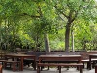 Kirstenbosch Deck