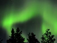 Husky Tours Lapland