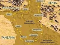 Great Wildbeast Migration Itinerary