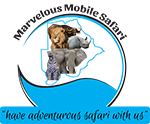 Marvelous Mobile Safari