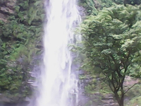 Green Travel and Tour Safaris