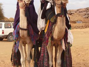 Algerian Sahara Tour Photos