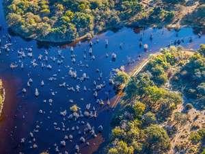 6 Day Okavango Delta Safari Photos