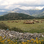 Albania Mountain Meadow