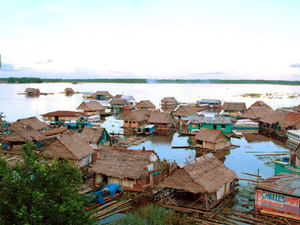 Amazon Rain Forest 3 Days