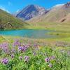 Andes Mountains - Mendoza Argentina