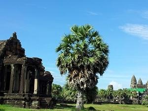 Angkor Wat Tours 3 Days 2 Nights