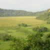 Arusha National Park Ngurdoto Crater