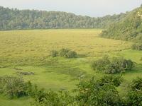 Arusha Natpark Ngurdoto Crater