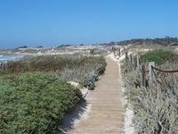 Moss Beach