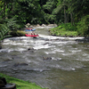 Ayung River Whitewater Rafting