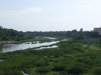 Adyar Río