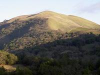 Bald Mountain Range