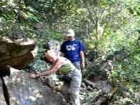 Trekking in Balphakram National Park