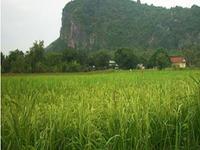 Phnom Sam Pov Resort