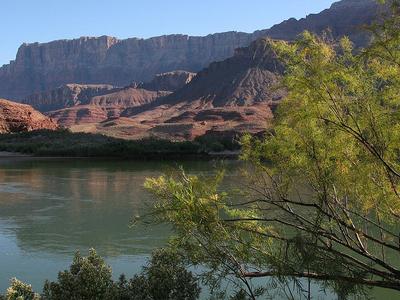 Beamer Trail Views - Grand Canyon - Arizona - USA