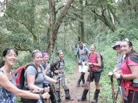The Best of Tanzania Tour