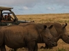 Unique Adventure Conservation Safari