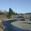 Bogachiel River