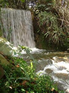 Botanical Garden Waterfalls