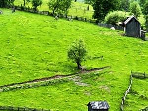 Land of Bukovina Photos