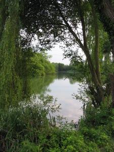 Burghfield Sailing Club Lake