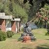 Bust Of Mahatma Gandhi At Ashram