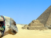 Cairo4You Private Tours