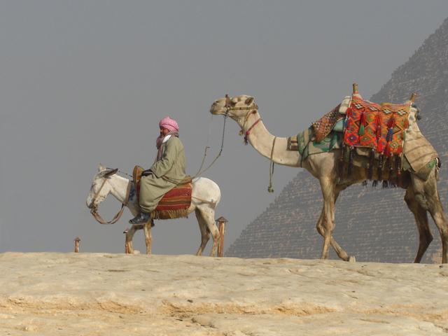 Bahareya - Farafra (White Desert) - Dakhla Oasis - Baris Oasis - Luxor Photos