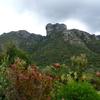 Castle Rock From Kirstenbosch