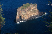 Cathedral Rock - Norfolk Island