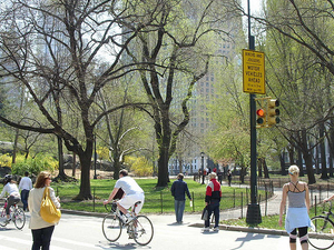 1/2 Off Our NYC Walking and Drinking Tours