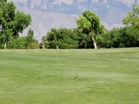 Chamisa Hills Country Club - Course 1