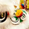 Chinatown Chinese New Year Celebrations 2012