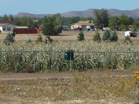 Chino Valley Town
