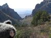 Chisos Basin Loop Trail