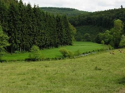Clerve Alscheid In Kiischpelt