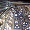 Cologne Cathedral In Spire