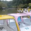 Colorful Boats At Kodomonokuni
