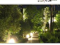 Cordoba Botanical Gardens